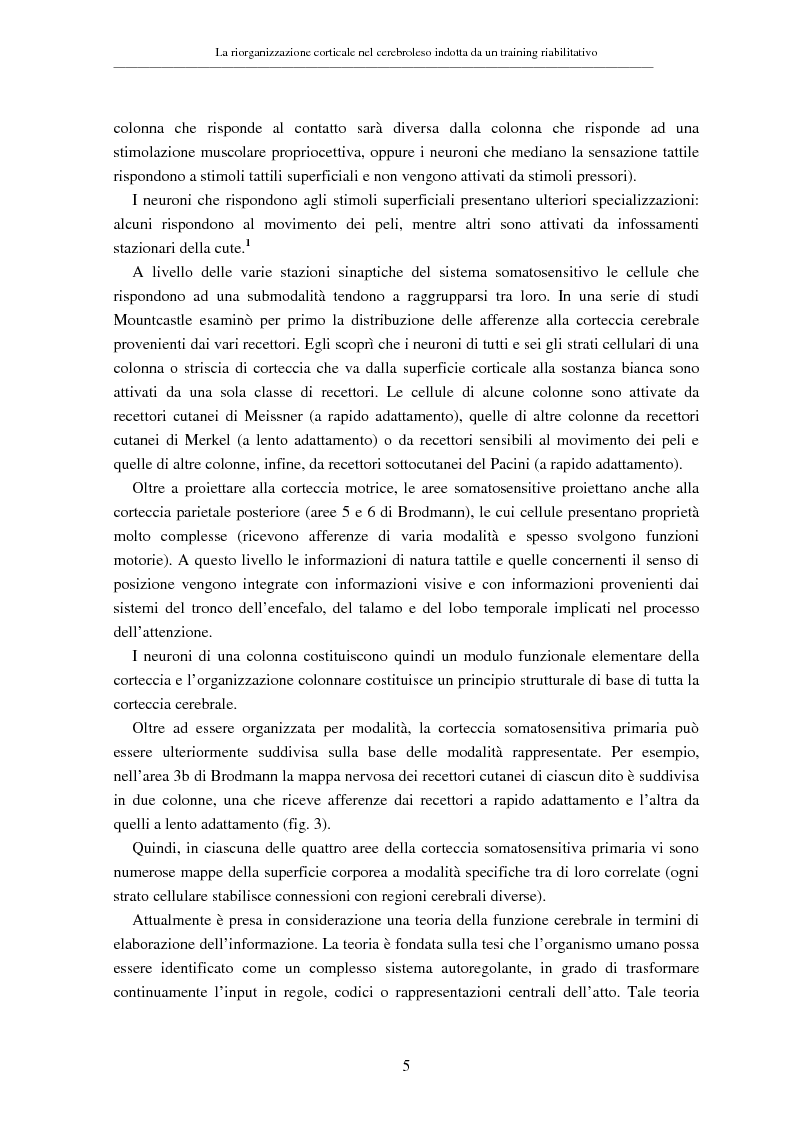 Anteprima della tesi: La riorganizzazione corticale nel cerebroleso indotta da un training riabilitativo, Pagina 9