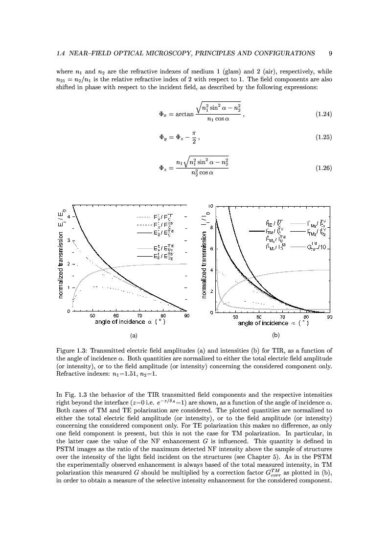 Anteprima della tesi: Near-Field Optics of Localized Surface Plasmons, Pagina 11