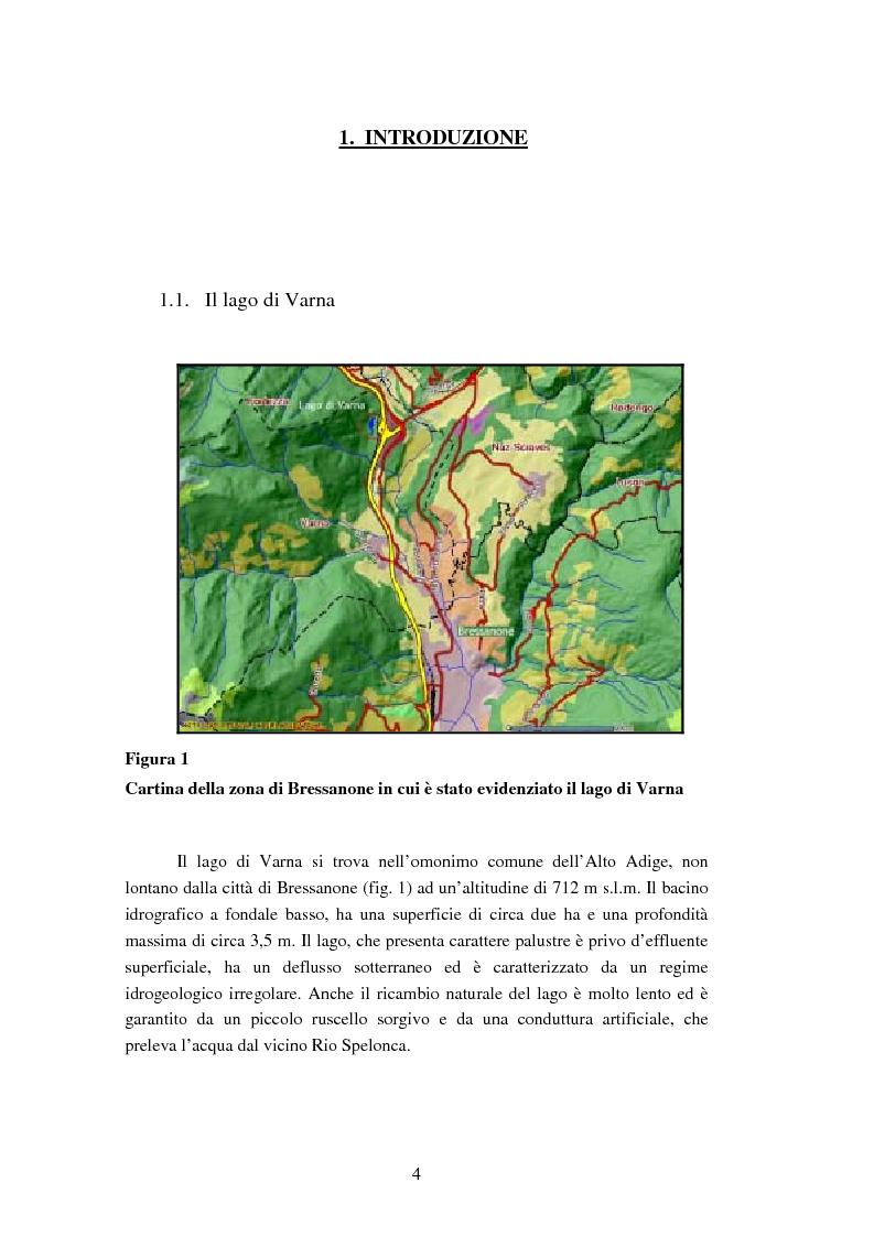 Anteprima della tesi: Analisi dei ribotipi dei ceppi di Escherichia coli isolati dal lago di Varna (Bz), Pagina 1