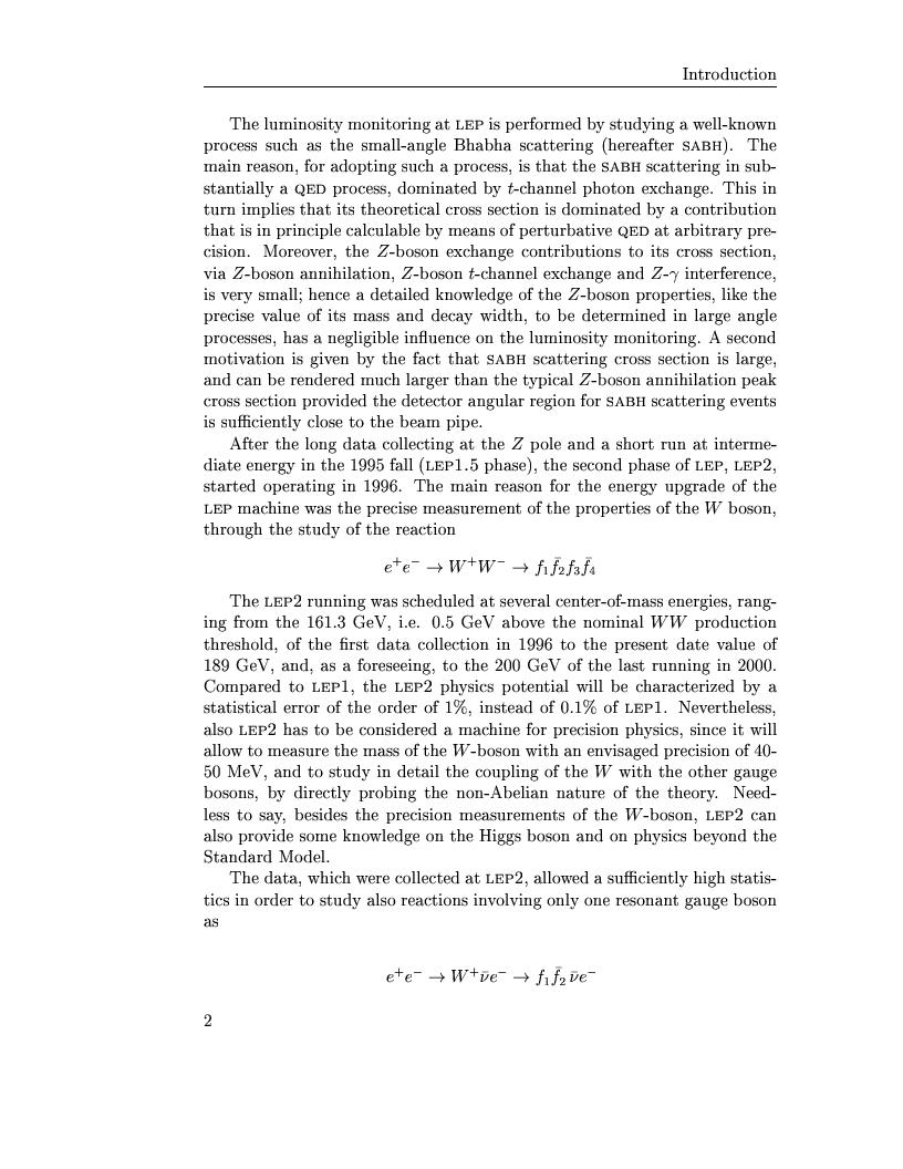Anteprima della tesi: Electro-weak physics with forward dynamics at LEP, Pagina 3