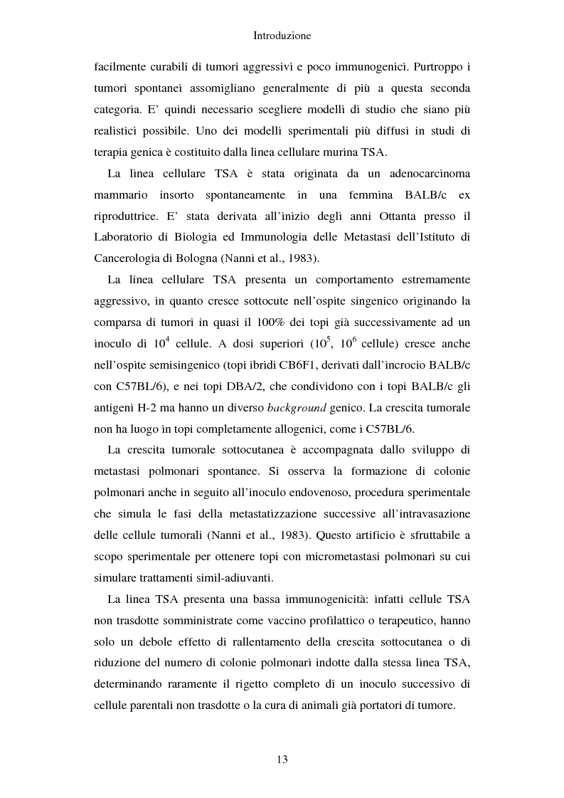 Anteprima della tesi: Produzione di vaccini per la terapia genica mediante trasduzione di Interleuchina 18 in cellule di carcinoma mammario murino, Pagina 10