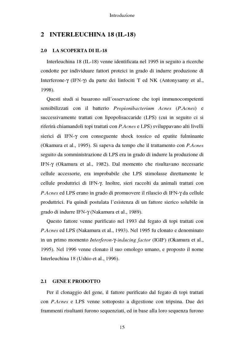 Anteprima della tesi: Produzione di vaccini per la terapia genica mediante trasduzione di Interleuchina 18 in cellule di carcinoma mammario murino, Pagina 12