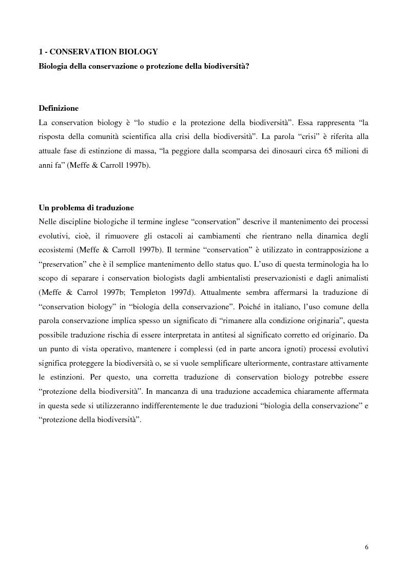 Anteprima della tesi: Biodiversità e biogeografia dei molluschi marini italiani: modelli di analisi a fini conservazionistici, Pagina 1