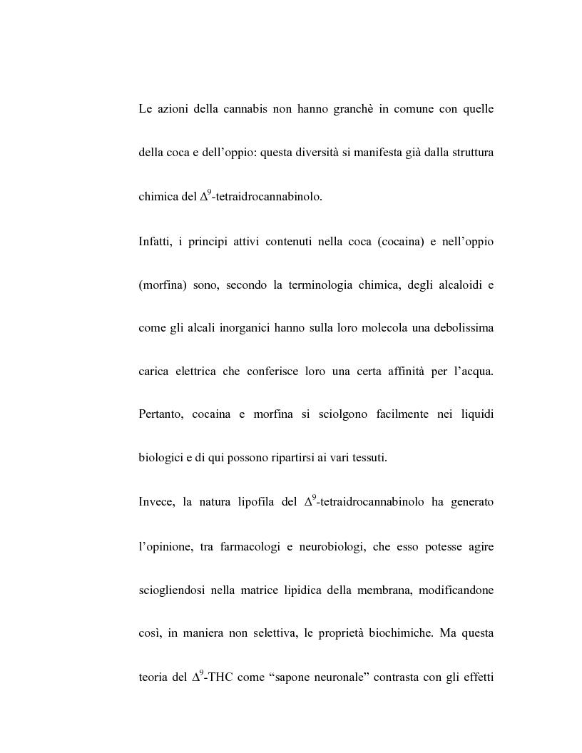 Anteprima della tesi: Controllo dell'attività bronchiale da parte dei cannabinoidi endogeni, Pagina 3
