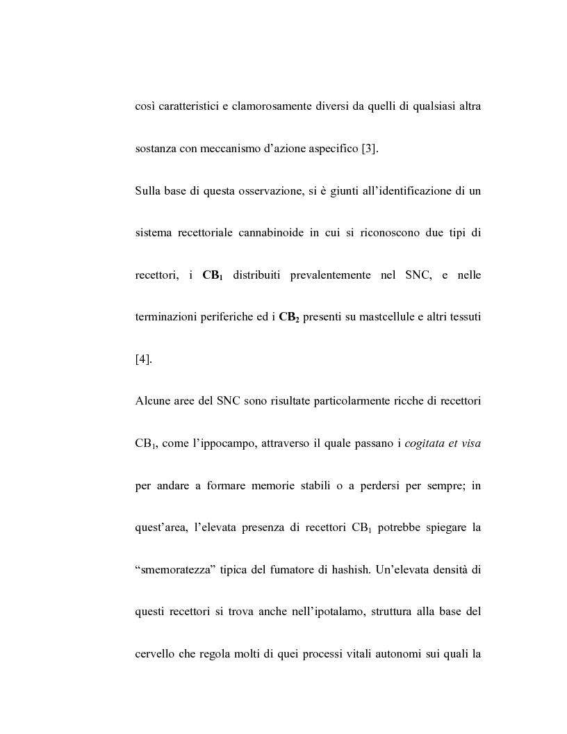 Anteprima della tesi: Controllo dell'attività bronchiale da parte dei cannabinoidi endogeni, Pagina 4