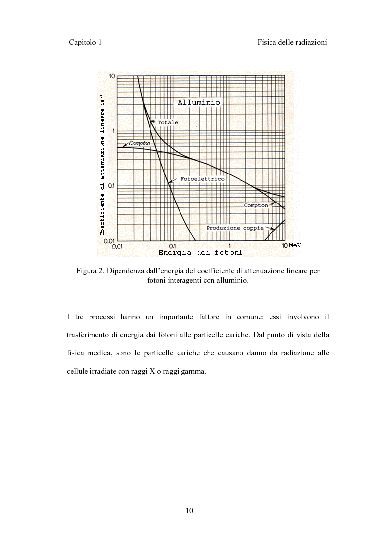 Anteprima della tesi: Dosimetria in vivo nei trattamenti radioterapici con fasci esterni, Pagina 8