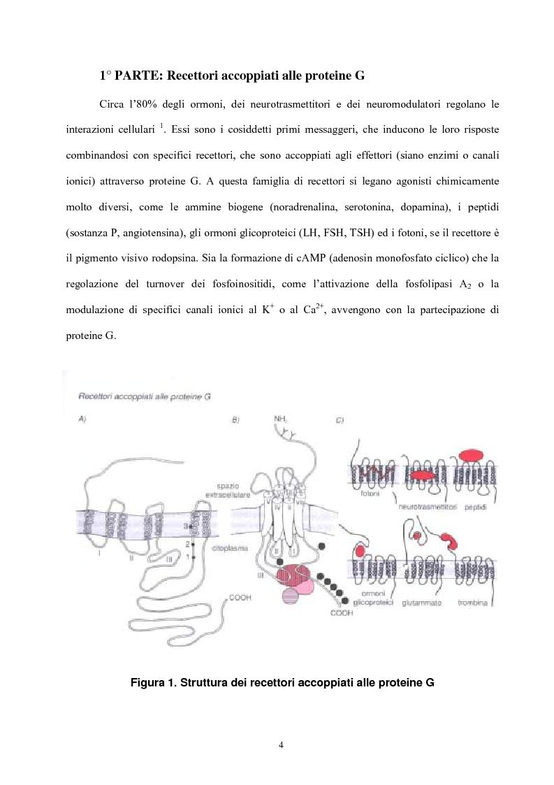 Anteprima della tesi: Struttura e attività di nuovi antagonisti adenosinici A2A, Pagina 1