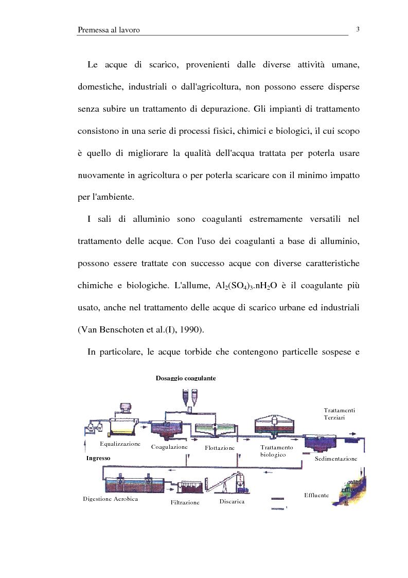 Anteprima della tesi: Trattamento dei reflui urbani mediante coagulazione/flocculazione con sali di alluminio: efficienza del metodo ed evidenze ecotossicologiche, Pagina 1