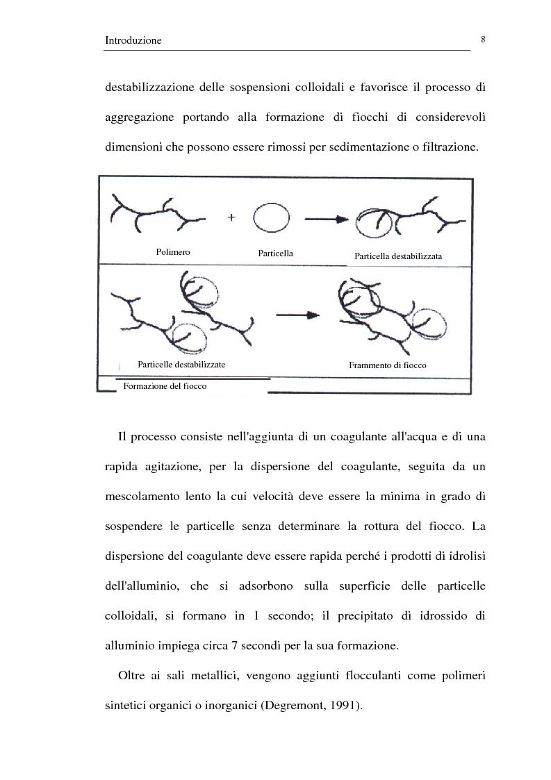 Anteprima della tesi: Trattamento dei reflui urbani mediante coagulazione/flocculazione con sali di alluminio: efficienza del metodo ed evidenze ecotossicologiche, Pagina 6