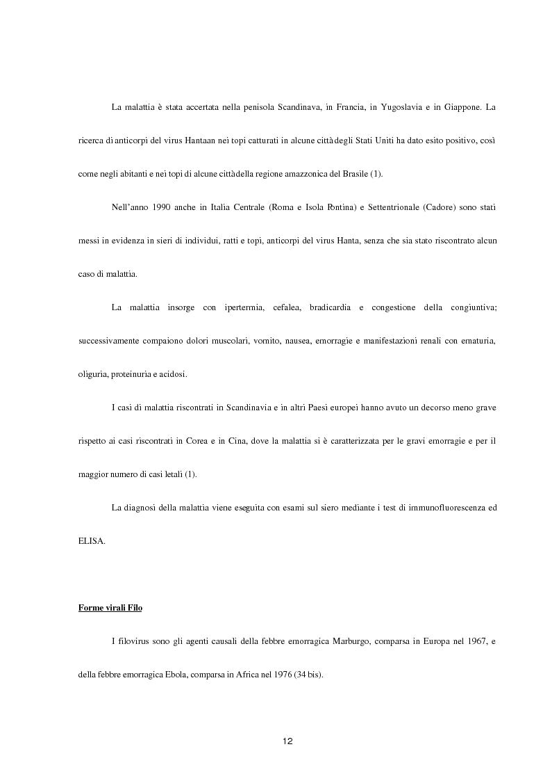 Anteprima della tesi: Aspetti epidemiologici della Crimean-Congo Haemorragic Fever, con particolare riferimento all'allevamento e alla macellazione dello struzzo, Pagina 10