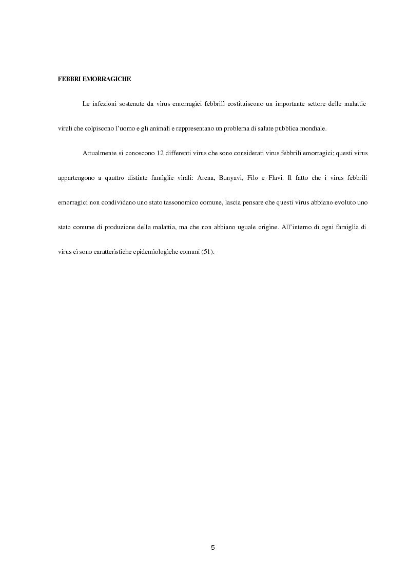 Anteprima della tesi: Aspetti epidemiologici della Crimean-Congo Haemorragic Fever, con particolare riferimento all'allevamento e alla macellazione dello struzzo, Pagina 3
