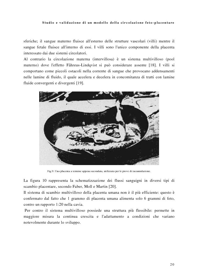 Anteprima della tesi: Studio e validazione di un modello di circolazione fetoplacentare, Pagina 16