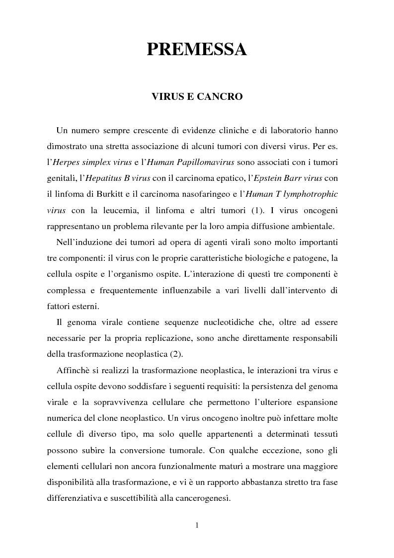 Anteprima della tesi: Cancro della cervice uterina ed espressione dell'oncoproteina HPV16 e7, Pagina 1