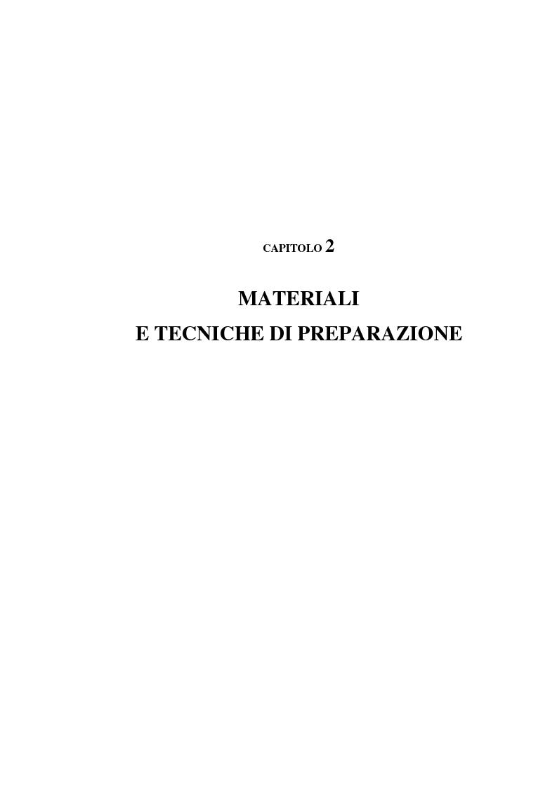 Anteprima della tesi: Caratterizzazione ed ottimizzazione di elastomeri termoplastici a base di polipropilene e gomma Epdm, Pagina 13