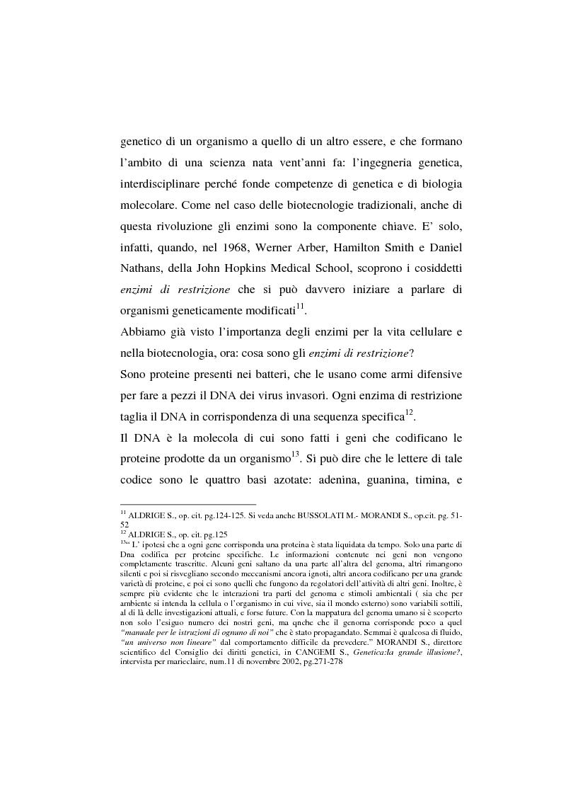 Anteprima della tesi: L'agricoltura geneticamente modificata dall'erosione della biodiversità ai problemi di una biopolitica globale, Pagina 7