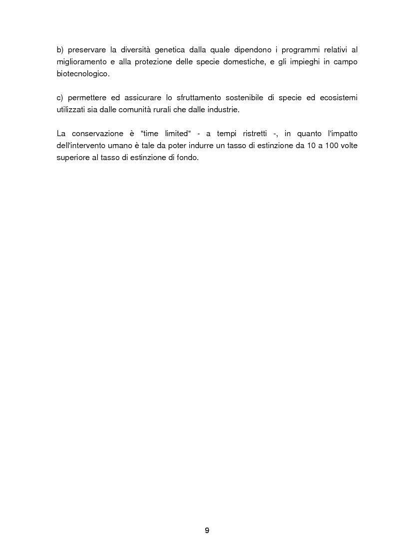 Anteprima della tesi: Specie rare della malacofauna marina mediterranea, Pagina 6
