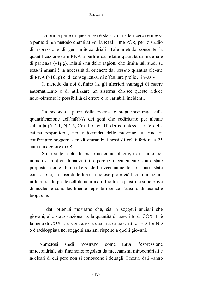 Anteprima della tesi: Trascrizione del DNA mitocondriale nell'invecchiamento, Pagina 2
