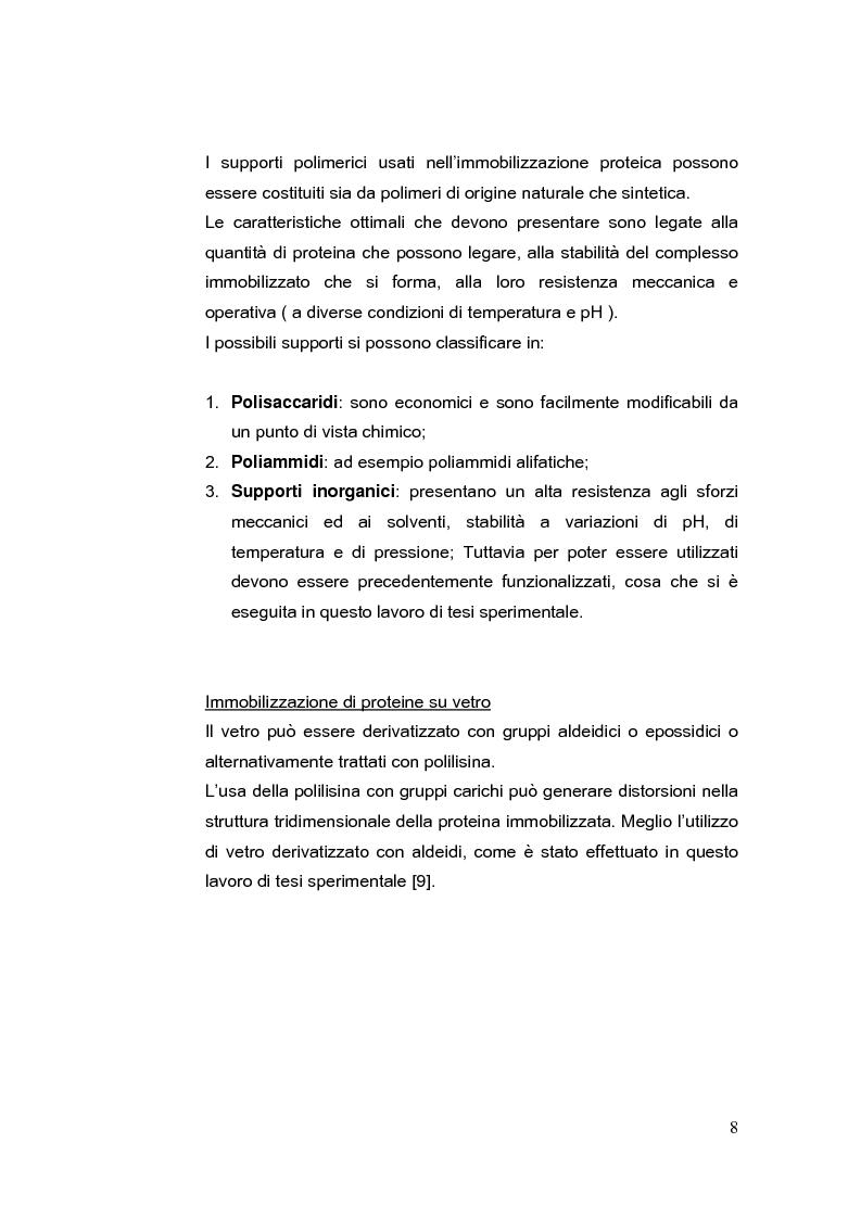 Anteprima della tesi: Immobilizzazione di albumina umana su supporti solidi; studio delle interazioni con composti aromatici, Pagina 8