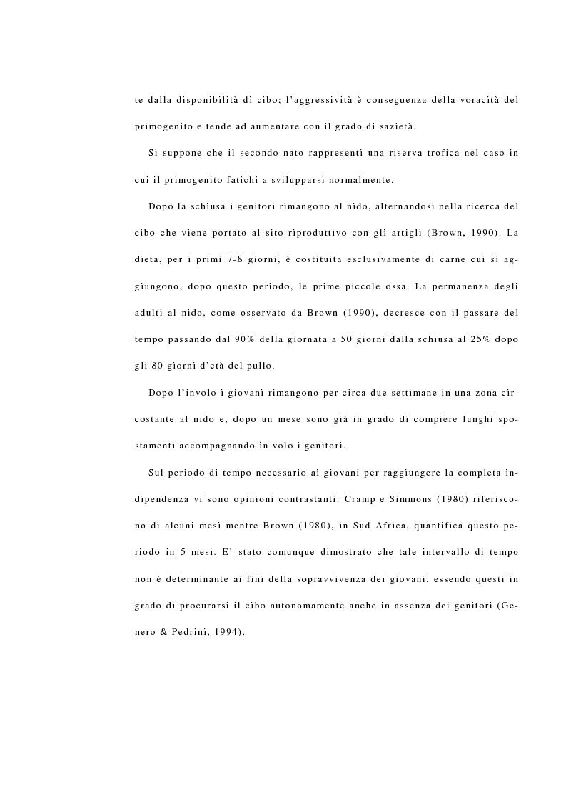 Anteprima della tesi: La reintroduzione del gipeto (Gypaetus Barbatus) sulle Alpi. Analisi del comportamento al nido e dopo l'involo, Pagina 10