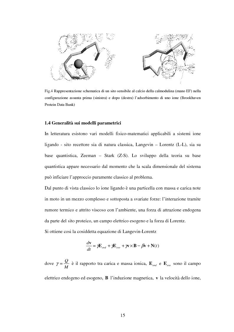 Anteprima della tesi: Modelli a risonanza parametrica dell'interazione bioelettromagnetica, Pagina 9
