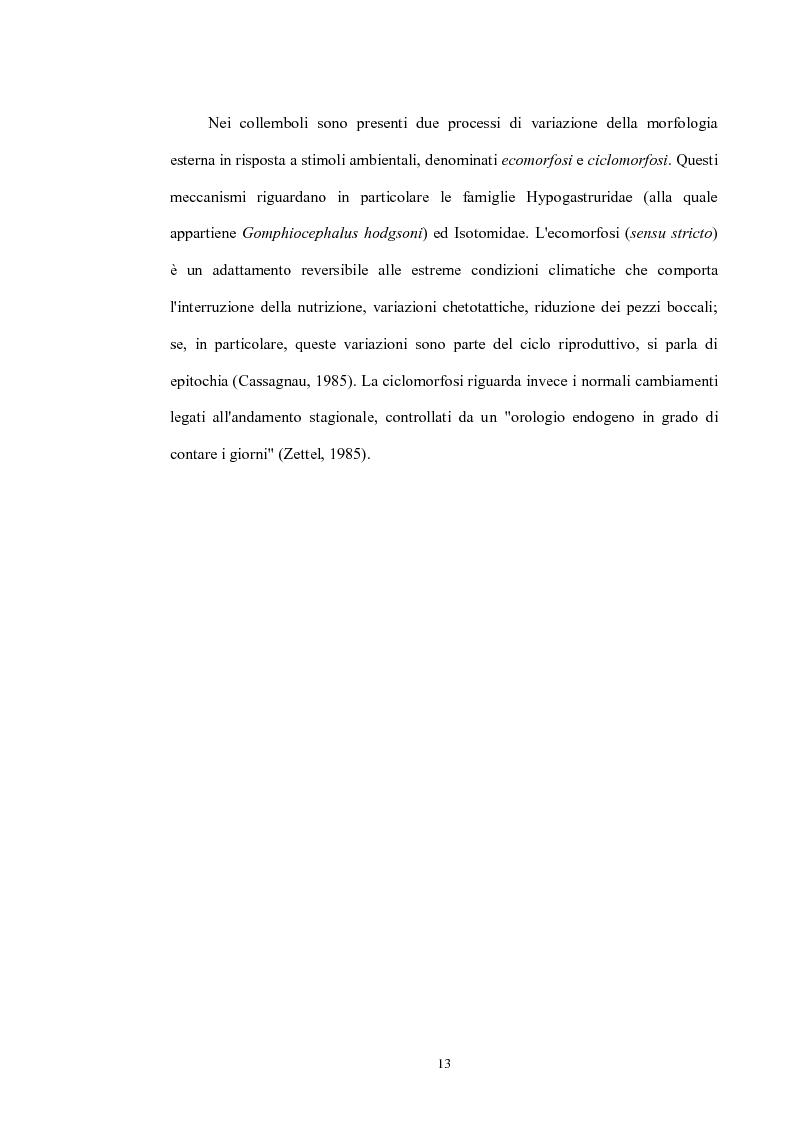 Anteprima della tesi: Variabilità e differenziazione genetica nella specie antartica Gomphiocephalus hodgsoni (Hexapoda, Collembola, Hypogastruridae), Pagina 10
