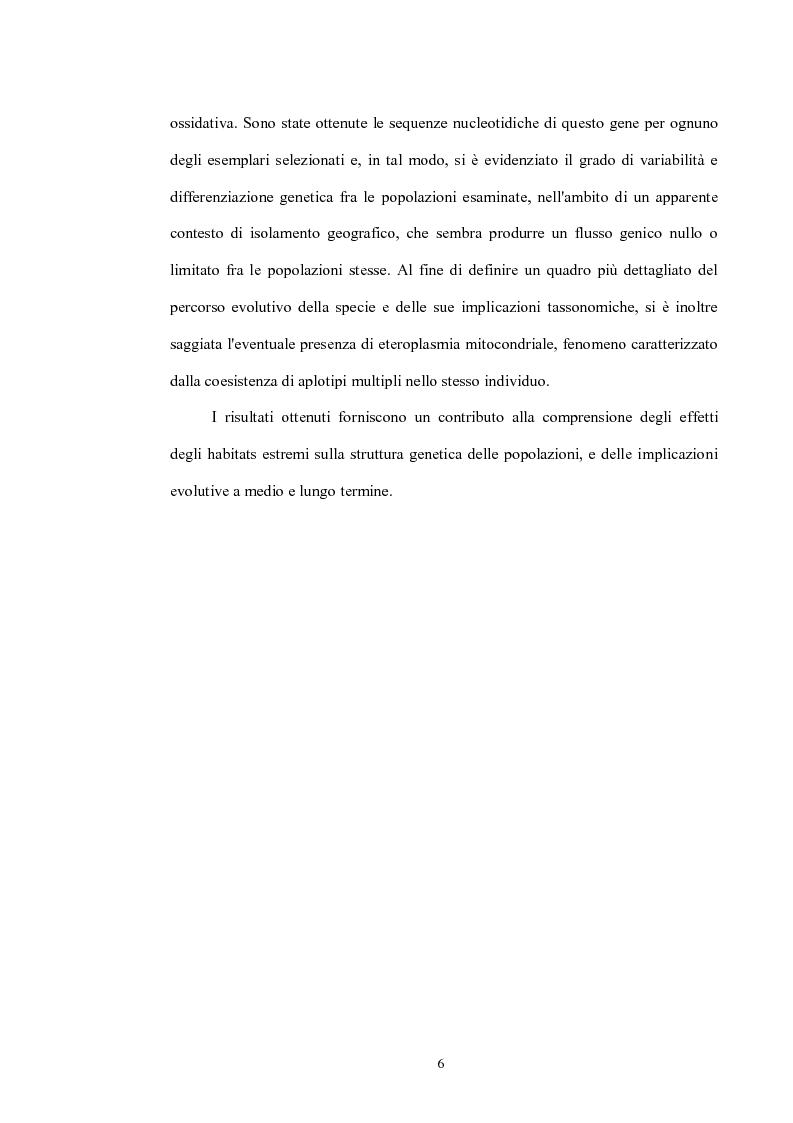 Anteprima della tesi: Variabilità e differenziazione genetica nella specie antartica Gomphiocephalus hodgsoni (Hexapoda, Collembola, Hypogastruridae), Pagina 3