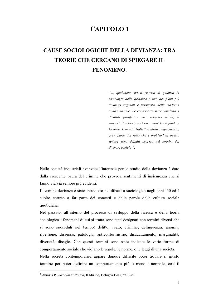 Anteprima della tesi: Il lavoro sociale di strada tra devianze e forme di controllo: il ruolo dell'educatore, Pagina 9