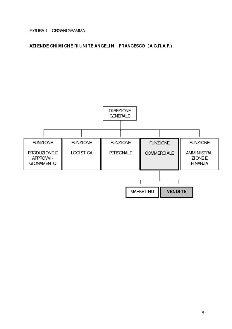 Anteprima della tesi: Il contributo della statistica alla gestione delle vendite. Un caso concreto: Acraf Spa, Pagina 7