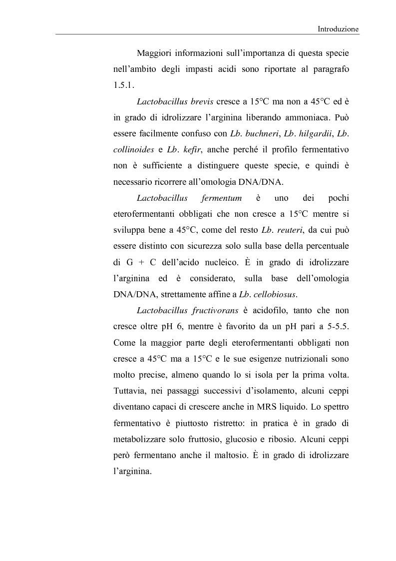 Anteprima della tesi: Selezione di fermenti lattici autoctoni per la panificazione, Pagina 11