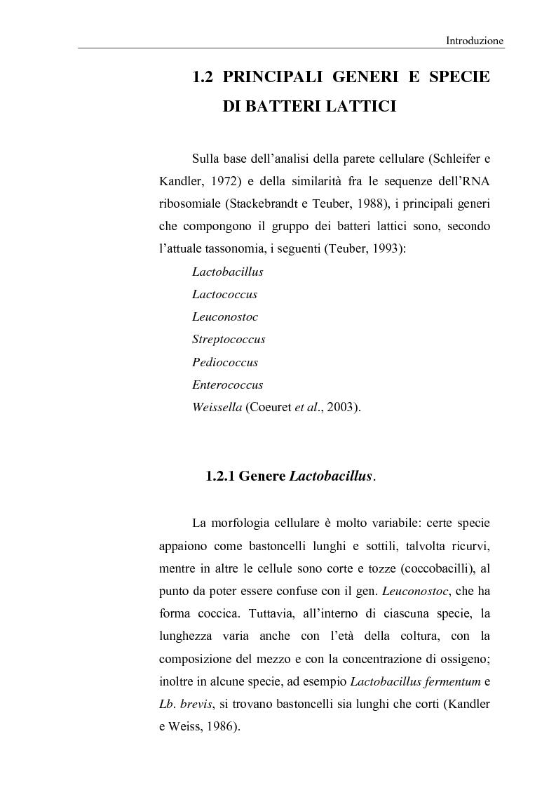 Anteprima della tesi: Selezione di fermenti lattici autoctoni per la panificazione, Pagina 3