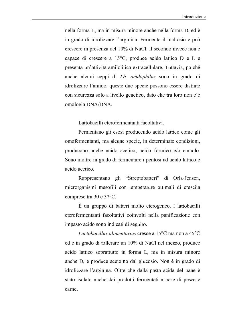 Anteprima della tesi: Selezione di fermenti lattici autoctoni per la panificazione, Pagina 7