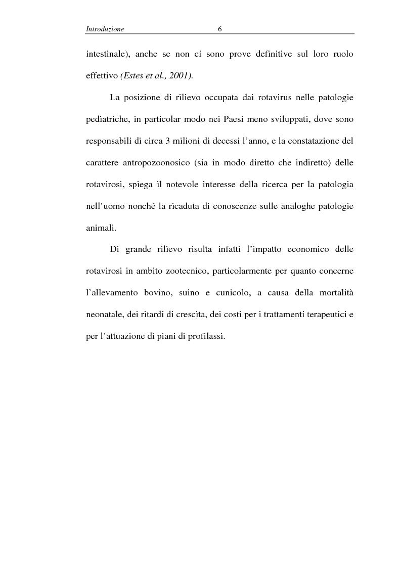 Anteprima della tesi: Malattie infettive virali - Identificazione di un nuovo allele del gene codificante per la proteina VP4 nei rotavirus, Pagina 2