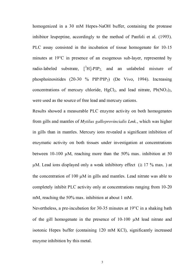 Anteprima della tesi: Effetto in vitro dei metalli pesanti piombo e mercurio sull'attività dell'enzima fosfolipasi C nelle branchie e nel mantello del mollusco marino Mytilus galloprovincialis Lmk, Pagina 3