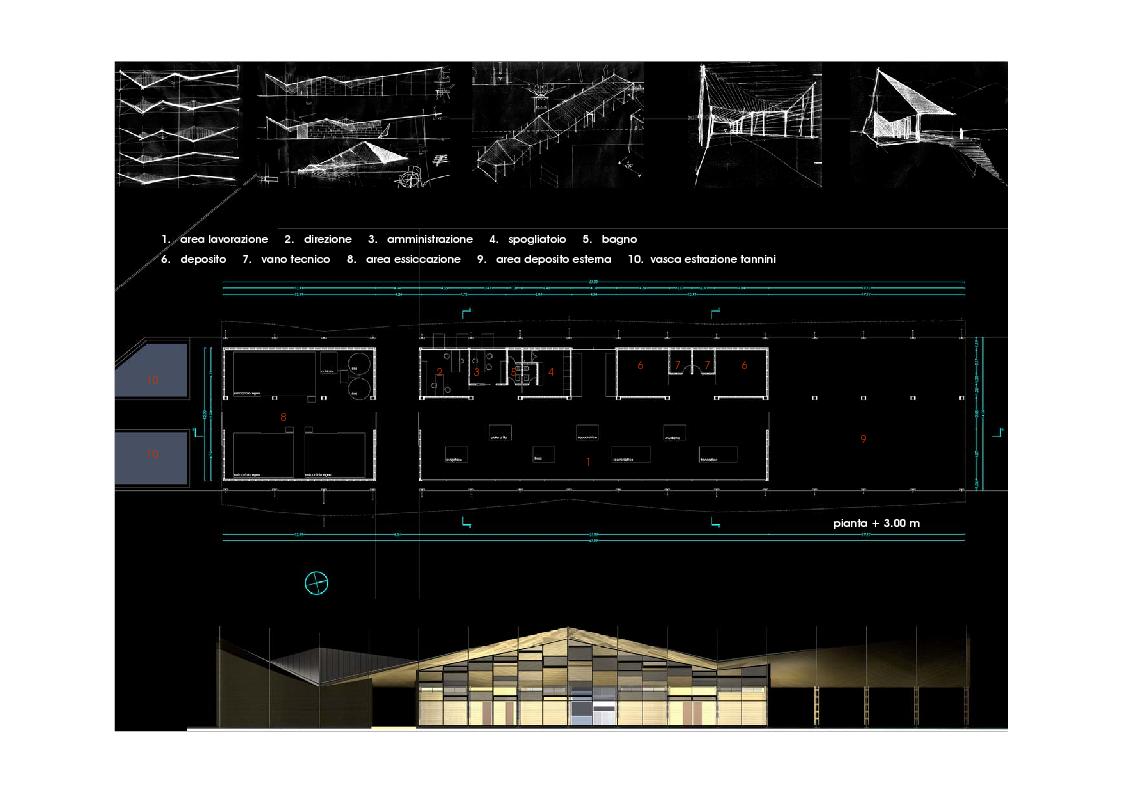 Anteprima della tesi: Utilizzi innovativi del legno in architettura: capannone per la produzione di semilavorati di castagno, Rotondi (Av), Pagina 1