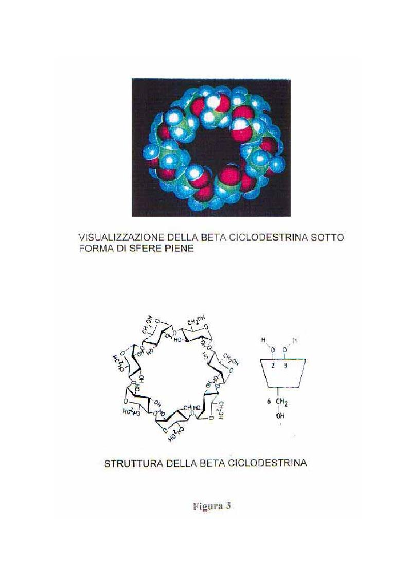Anteprima della tesi: Caratterizzazione e valutazione delle proprietà complessanti di materiali a base di ciclodestrina, Pagina 6