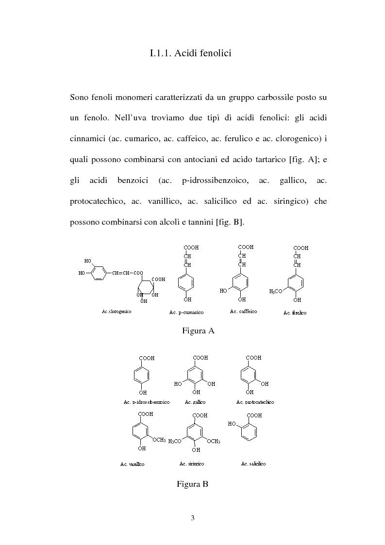 Anteprima della tesi: L'affinamento in legno di vino rosso della pianura reggiana, Pagina 3