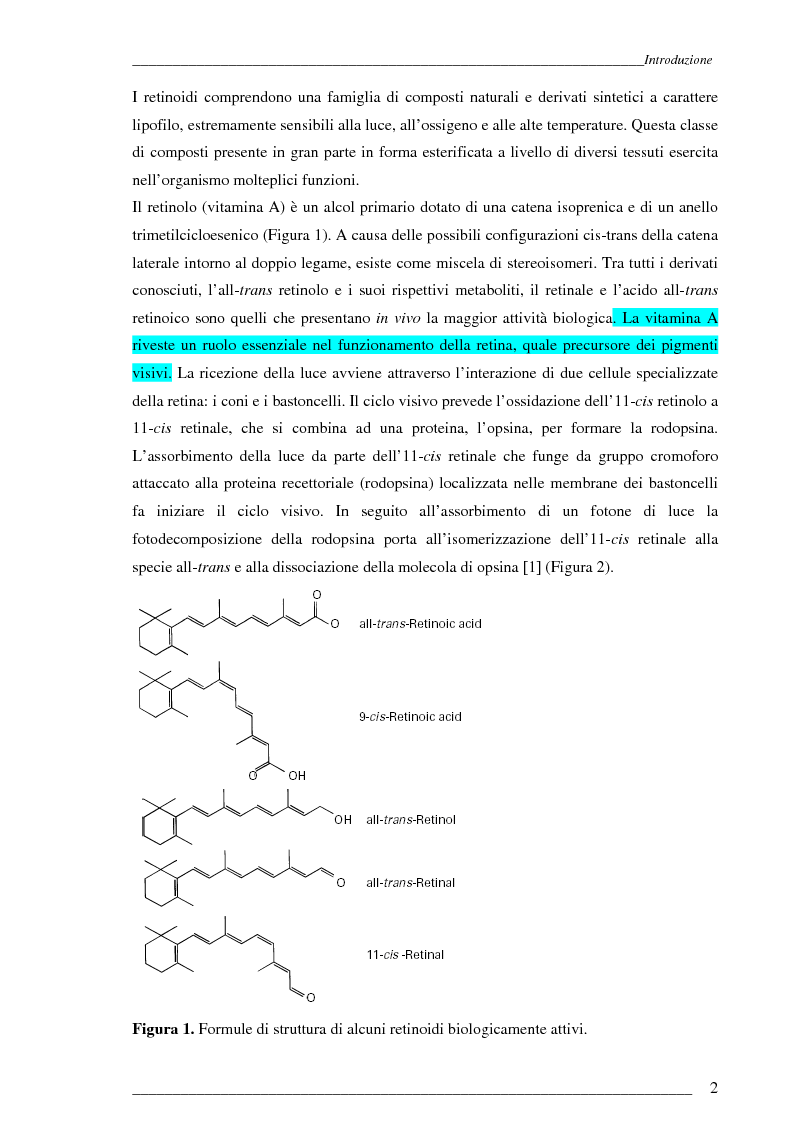 Anteprima della tesi: Studio Esi-Ms di dinamiche conformazionali metanolo-indotte di proteine adibite al trasporto di retinolo e acido retinoico (CrbpI, CrbpII e Crabp) mediante scambio idrogeno e deuterio, Pagina 1