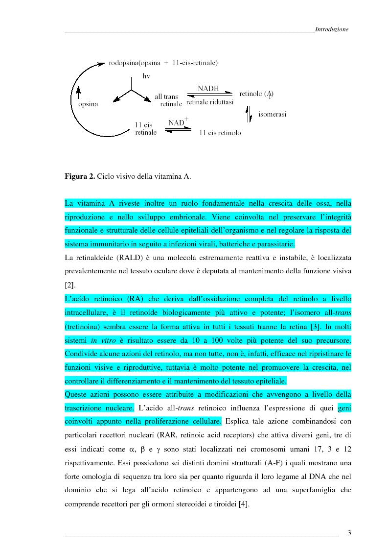 Anteprima della tesi: Studio Esi-Ms di dinamiche conformazionali metanolo-indotte di proteine adibite al trasporto di retinolo e acido retinoico (CrbpI, CrbpII e Crabp) mediante scambio idrogeno e deuterio, Pagina 2