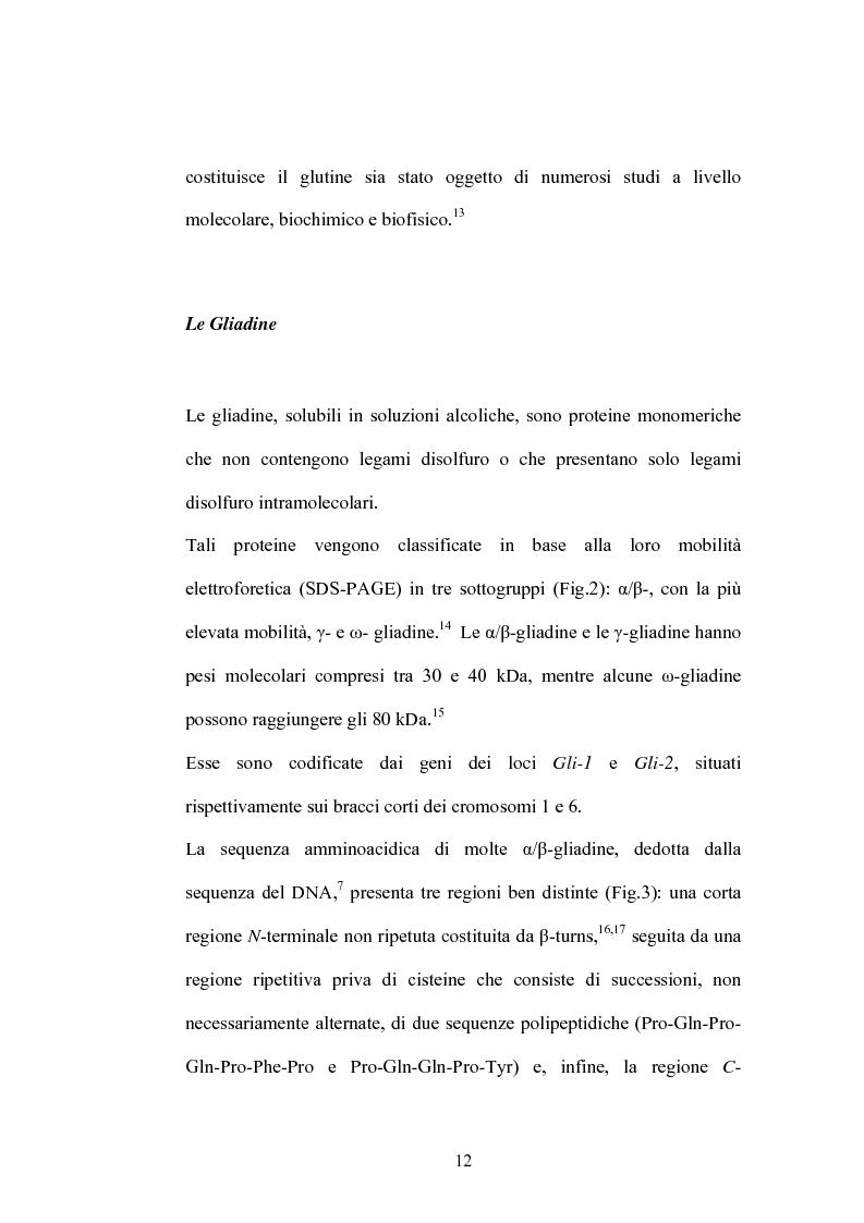 Anteprima della tesi: Studi di proteomica sulla cultivar di grano duro Simeto, Pagina 10