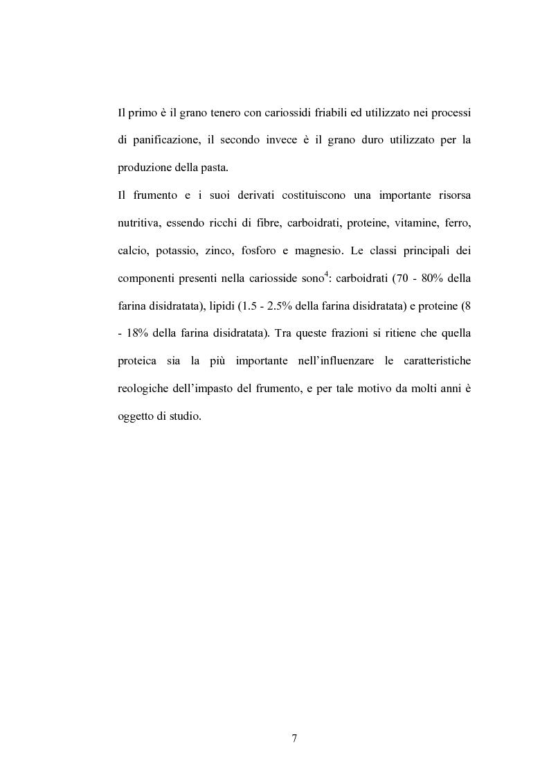 Anteprima della tesi: Studi di proteomica sulla cultivar di grano duro Simeto, Pagina 5