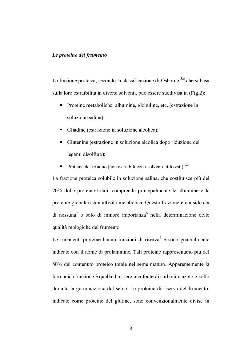 Anteprima della tesi: Studi di proteomica sulla cultivar di grano duro Simeto, Pagina 6