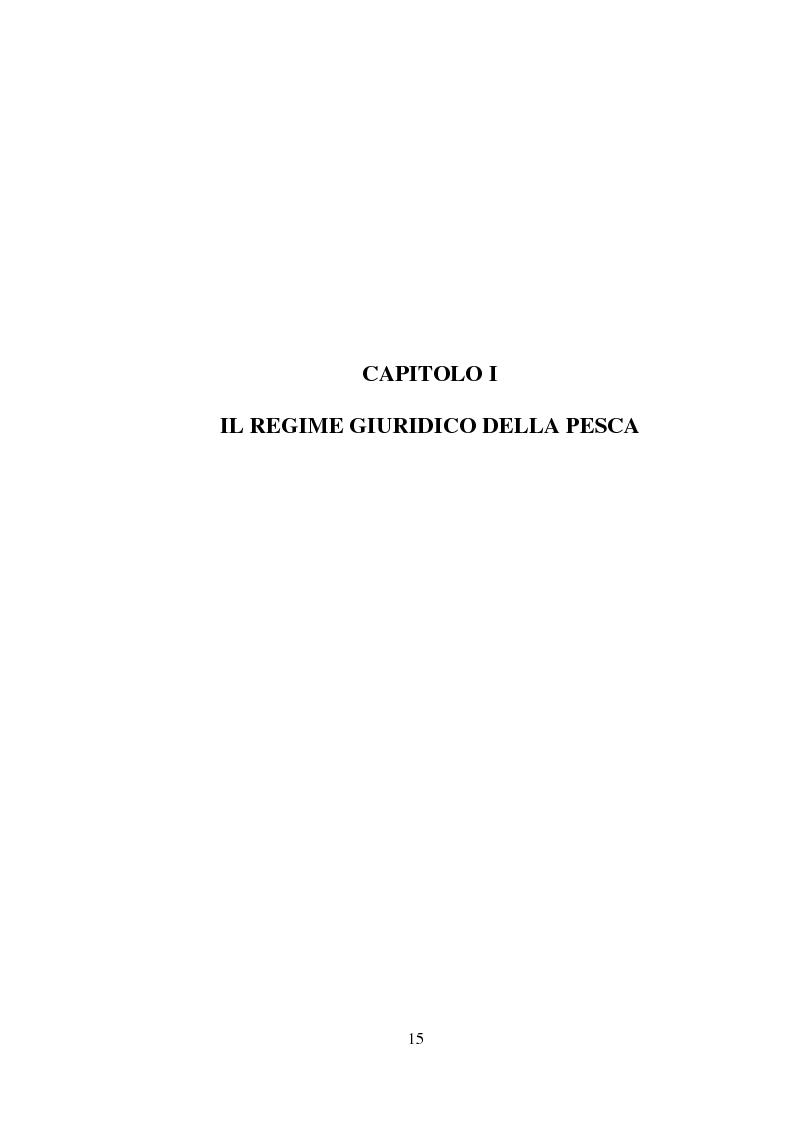 Anteprima della tesi: Il regime giuridico della pesca, Pagina 6