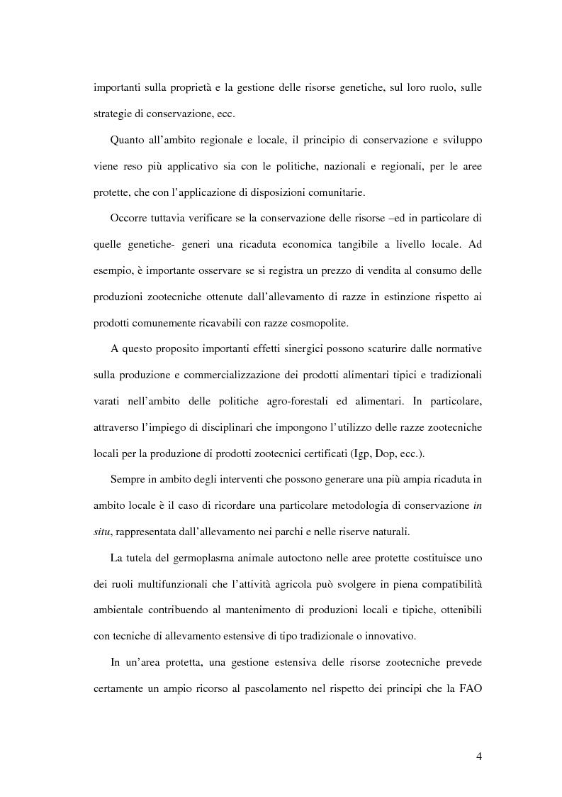 Anteprima della tesi: Aspetti economici della tutela delle razze zootecniche ragusane a rischio di estinzione, Pagina 4