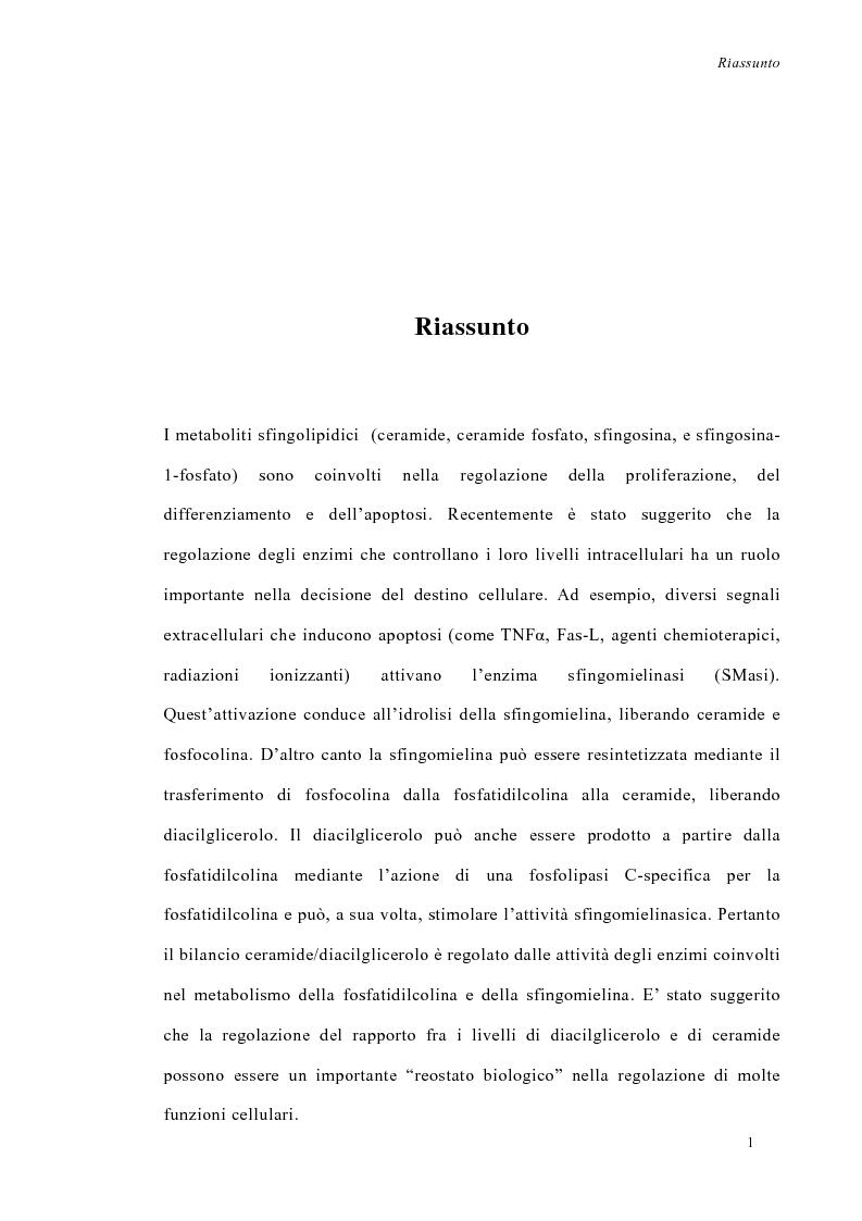 Anteprima della tesi: La deprivazione di siero induce variazioni nell'attività di enzimi nucleari coinvolti nel metabolismo degli sfingolipidi, Pagina 1
