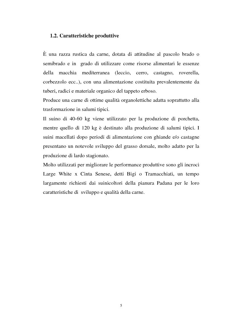 Anteprima della tesi: Come il diverso livello proteico della dieta influenza le caratteristiche chimico fisiche della carne suina in animali cinta senese, Pagina 5