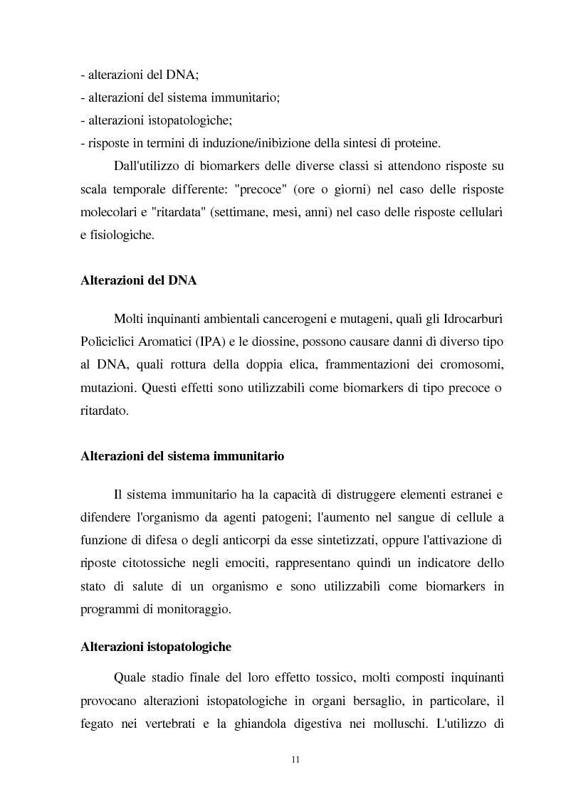 Anteprima della tesi: Valutazione dello stato fisiologico di organismi sentinella (Tapes Philippinarum e Mytilus Galloprovincialis) mediante l'uso di biomarkers, Pagina 11