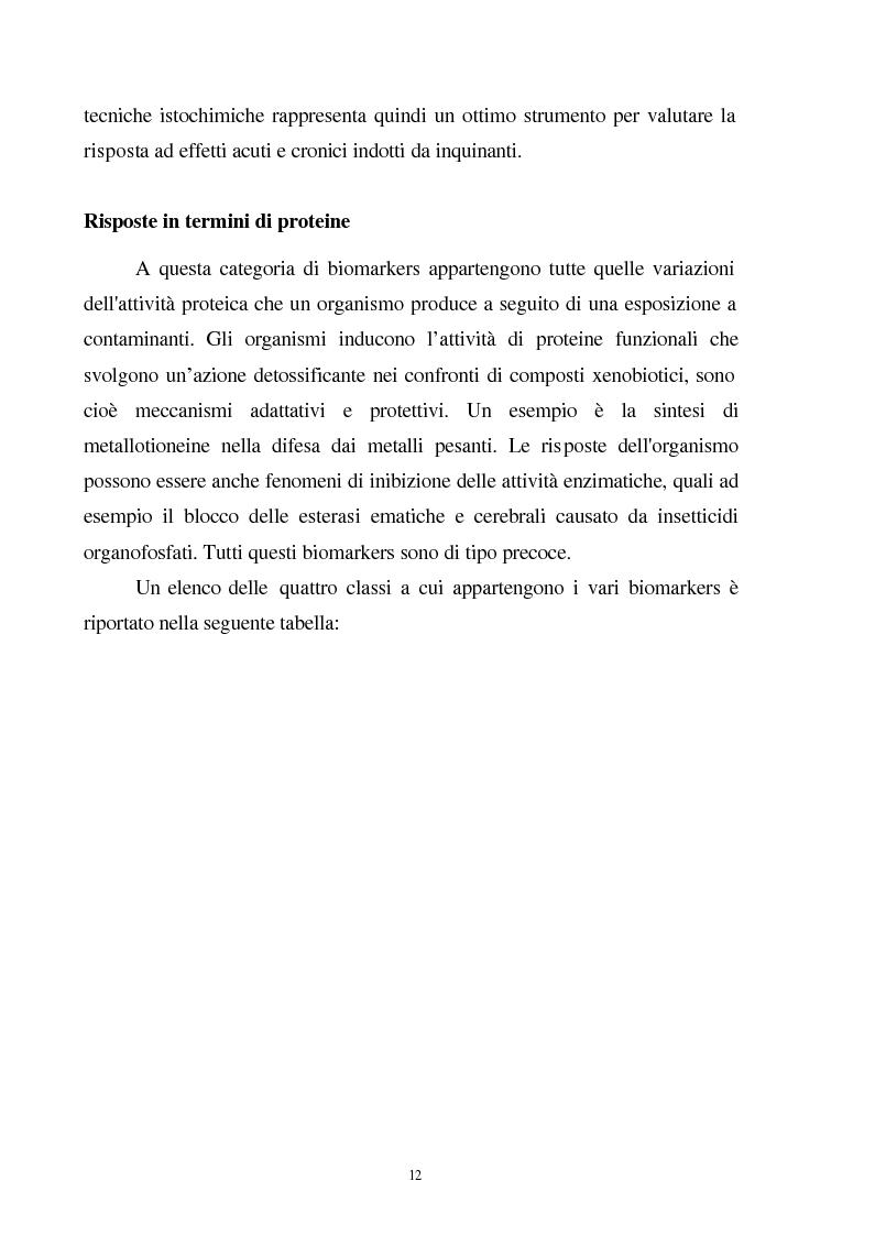 Anteprima della tesi: Valutazione dello stato fisiologico di organismi sentinella (Tapes Philippinarum e Mytilus Galloprovincialis) mediante l'uso di biomarkers, Pagina 12