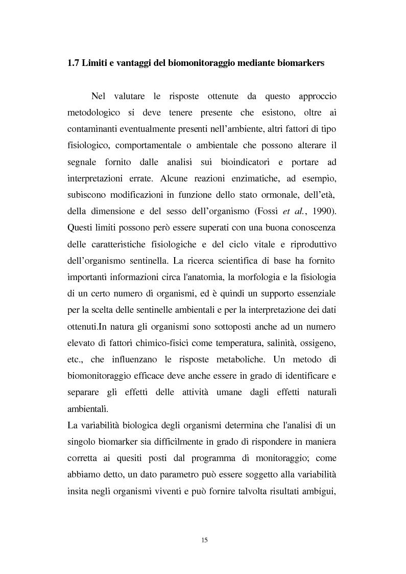Anteprima della tesi: Valutazione dello stato fisiologico di organismi sentinella (Tapes Philippinarum e Mytilus Galloprovincialis) mediante l'uso di biomarkers, Pagina 15