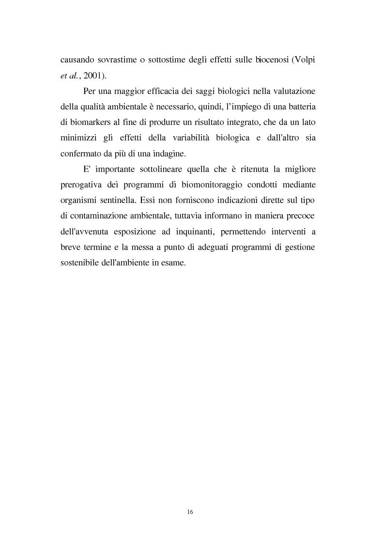 Anteprima della tesi: Valutazione dello stato fisiologico di organismi sentinella (Tapes Philippinarum e Mytilus Galloprovincialis) mediante l'uso di biomarkers, Pagina 16