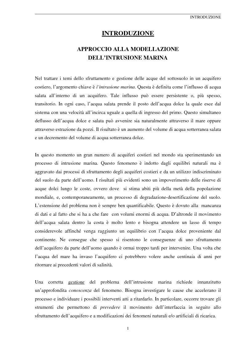 Anteprima della tesi: Modellizzazione Numerica dell'Intrusione Salina nell'Acquifero Costiero del Fiume Cecina, Pagina 1